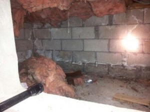 Rodent infested before shot of crawl space